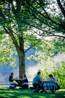 A picnic under the trees at Wolf Trap Park